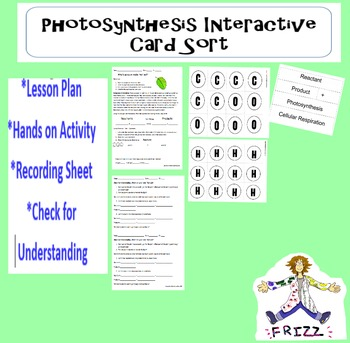 Photosynthesis Interactive Card Sort