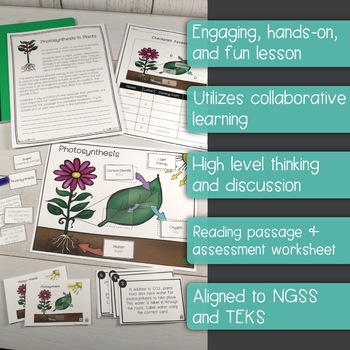 Photosynthesis interactive diagram task cards assessment page photosynthesis interactive diagram task cards assessment page included ccuart Gallery