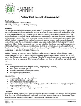 Photosynthesis Interactive Diagram (Task Cards & Assessment Page Included)