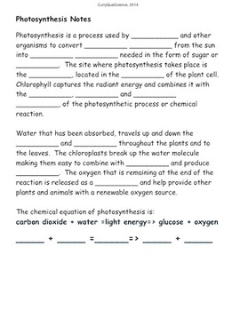 Photosynthesis Interactive Journal Bundle