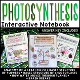 Photosynthesis Interactive Notebook | Distance Learning Google Classroom