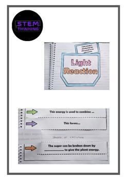 Interactive Notebook Foldables Middle High School Biology - Interactive notebooks high school
