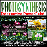 Photosynthesis PowerPoint - Interactive