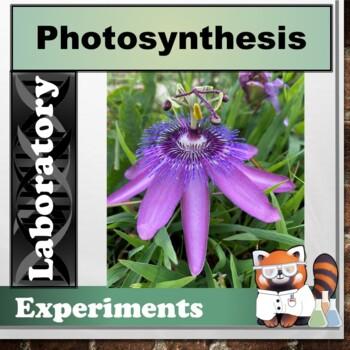 Photosynthesis Lab
