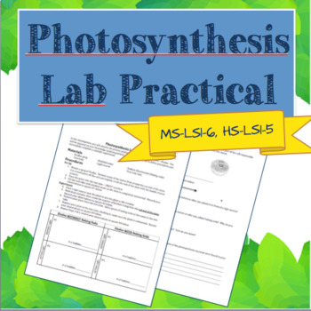 Photosynthesis Lab Practical Quiz (NGSS MS-LS1-6, HS-LS1-5)