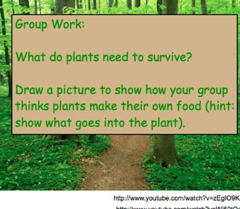 Photosynthesis - Lesson Presentation, Rap Song, Videos, Assignments