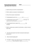 Photosynthesis Light Reaction Worksheet