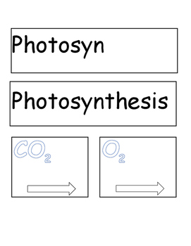 Photosynthesis Mobile