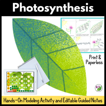 Photosynthesis: Modeling Activity and Guided Notes Lessons