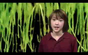 Photosynthesis Music Video with Lyrics