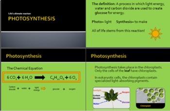 Photosynthesis Notes (plus student version + quiz)