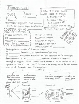 Photosynthesis One Sheet Wonder (Front and Back)