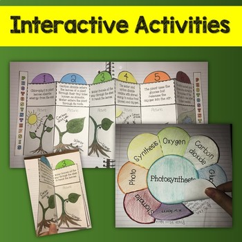 Photosynthesis Pack - Printables, Interactive Notebook, Editable PowerPoint