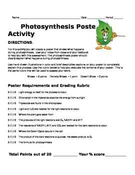 Photosynthesis Poster Review Activity
