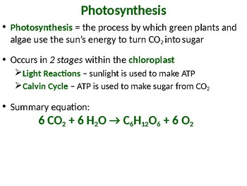 Photosynthesis worksheets teaching resources teachers pay teachers photosynthesis powerpoint photosynthesis powerpoint fandeluxe Choice Image