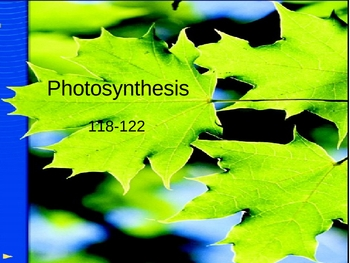 Photosynthesis PowerPoint Presentation