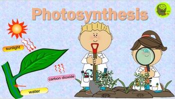 Photosynthesis PowerPoint Presentation