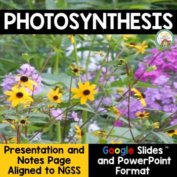 Photosynthesis PowerPoint and Notes