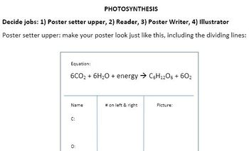 Photosynthesis Preparation Table Posters