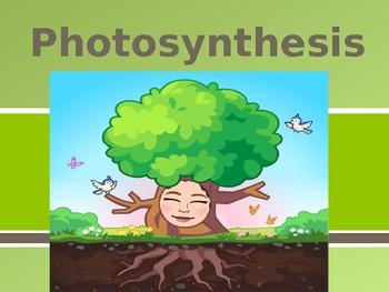 Photosynthesis Presentation