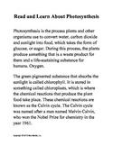 Photosynthesis Printable Worksheet Bundle