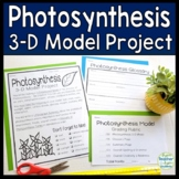 Photosynthesis Project: 3-D Model of Photosynthesis with Glossary & Summary too!
