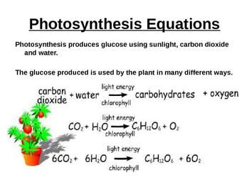 Photosynthesis, Rate of Photosynthesis & Uses Of Glucose power point