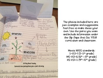 Photosynthesis Reading Comprehension Interactive Notebook