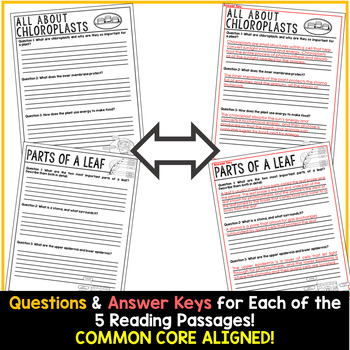 Photosynthesis Reading Passages - Questions - Annotations