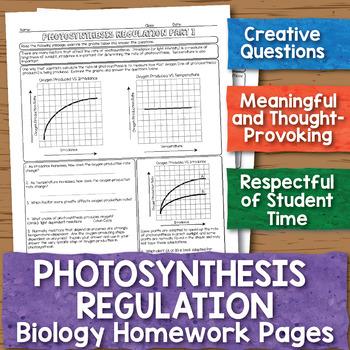 Photosynthesis Regulation Biology Homework Worksheets