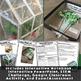 Photosynthesis and Cellular Respiration Resource Bundle