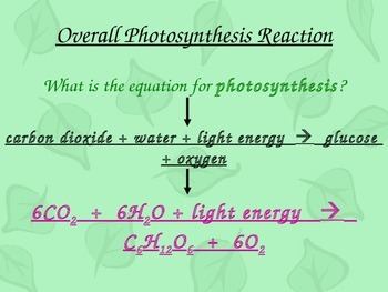 Photosynthesis & Respiration