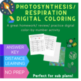 Photosynthesis & Respiration Digital Coloring Review Activity