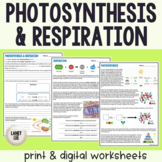 Photosynthesis & Respiration - Reading & Questions - Print
