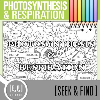 Photosynthesis- Respiration Seek & Find Doodle Page