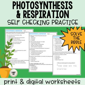 Photosynthesis & Respiration Self Checking Practice