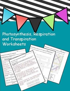 Photosynthesis, Respiration and Transpiration