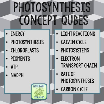 Photosynthesis Review Qubes