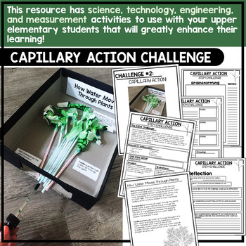 Photosynthesis Unit STEM Challenges