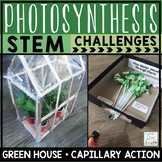 Photosynthesis Activities STEM Challenges