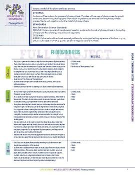 Photosynthesis - STEM Lesson Plan