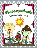 Photosynthesis Scavenger Hunt