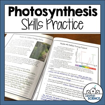Photosynthesis Skills Practice