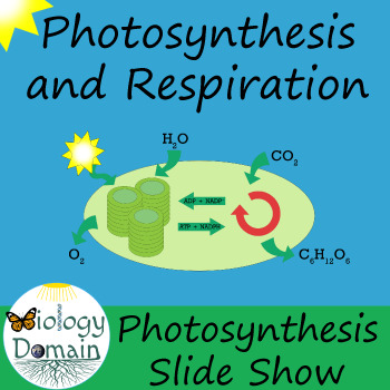 Photosynthesis Powerpoint Slide Show