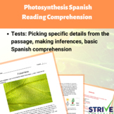 Photosynthesis Spanish Reading Comprehension Worksheet