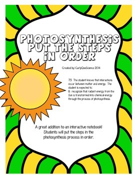 Photosynthesis Steps in the Process