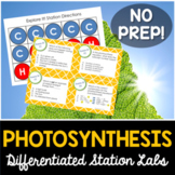 Photosynthesis Student-Led Station Lab
