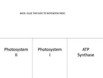 Photosynthesis Systems Flip Diagram