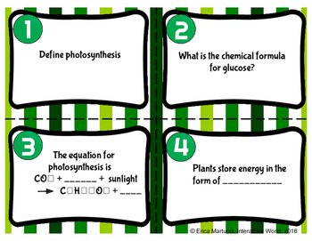 Photosynthesis Task Cards