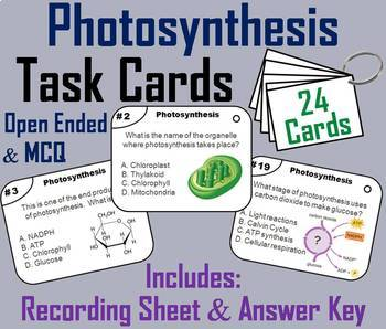 Photosynthesis Task Cards and Activities Mini Bundle